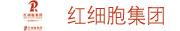 厦门红细胞集团有限公司招聘信息