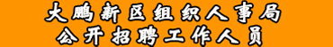 深圳市大鹏新区组织人事局招聘信息