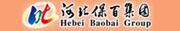 河北保百集团有限公司招聘信息