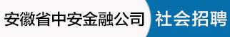 安徽省中安金融资产管理股份有限公司招聘信息