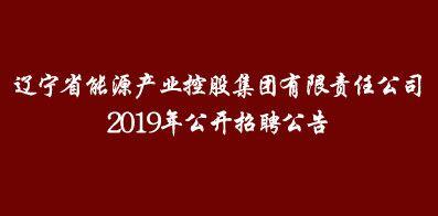 辽宁省能源产业控股集团有限责任公司
