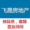 新疆飞晟房地产开发有限公司