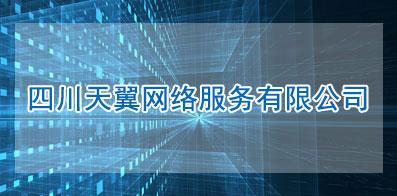 四川天翼网络服务有限公司