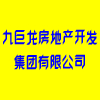 九巨龙房地产开发集团有限公司