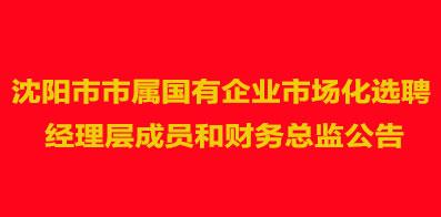 沈阳市人民政府国有资产监督管理委员会