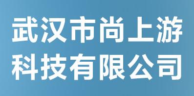武汉市尚上游科技有限公司