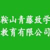 鞍山青藤致学教育咨询有限公司