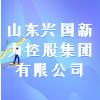 山东兴国新力控股集团有限公司