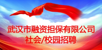 武汉市融资担保有限公司