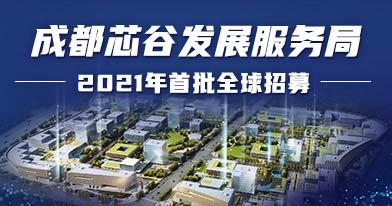 成都芯谷发展服务局招聘信息
