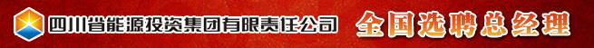 四川省能源投资集团有限责任公司招聘信息