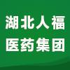 湖北人福醫藥集團有限公司