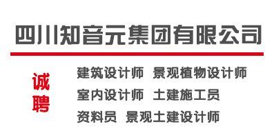 四川知音元集团有限公司