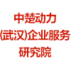 中楚動力(武漢)企業服務研究院