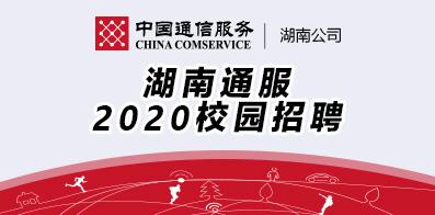 湖南省通信产业服务有限公司