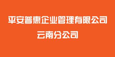 平安普惠企业管理有限公司云南分公司