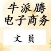 邢臺牛派騰電子商務有限公司