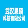 武漢恩碩科技有限公司