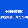 中國電信集團系統集成有限責任公司山東分公司