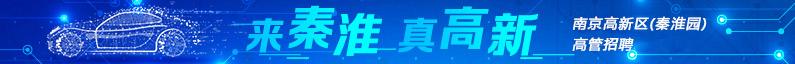 南京秦淮科技创新创业进展集团有限公司招聘信息