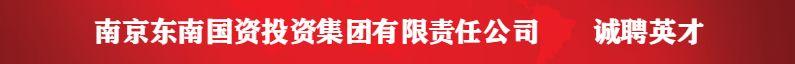 南京东南国资投资集团有限责任公司招聘信息