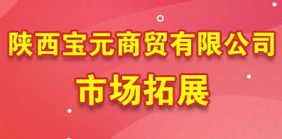 陕西宝元商贸有限公司