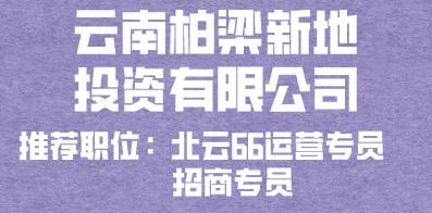 云南柏梁新地投资有限公司