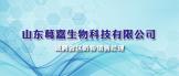 https://company.zhaopin.com/CZ885197700.htm