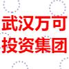 武汉万可投资集团有限公司