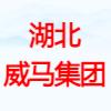 湖北威马楚通实业集团有限公司