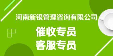 河南新银管理咨询有限公司