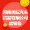 河南国际汽车贸易有限公司