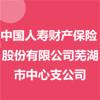 中国人寿财产保险股份有限公司芜湖市中心支公司