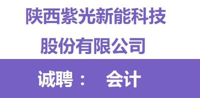 陕西紫光新能科技股份有限公司
